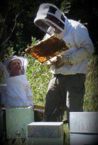 Fred de ma-ruche.fr